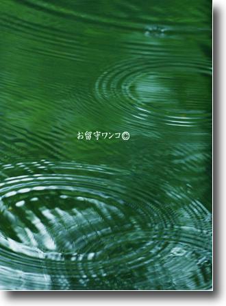 f0111147_1829482.jpg
