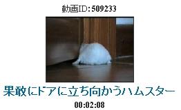 b0064059_1458988.jpg