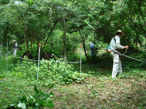 定例活動日:谷筋草刈り_c0108460_17434574.jpg