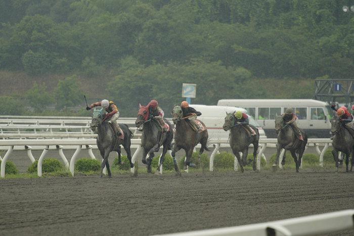 2007年6月24日(日) 高知競馬 9R 倉兼育康騎手壮行特別_a0077663_18251172.jpg