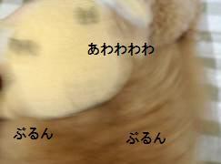 d0080673_14564964.jpg