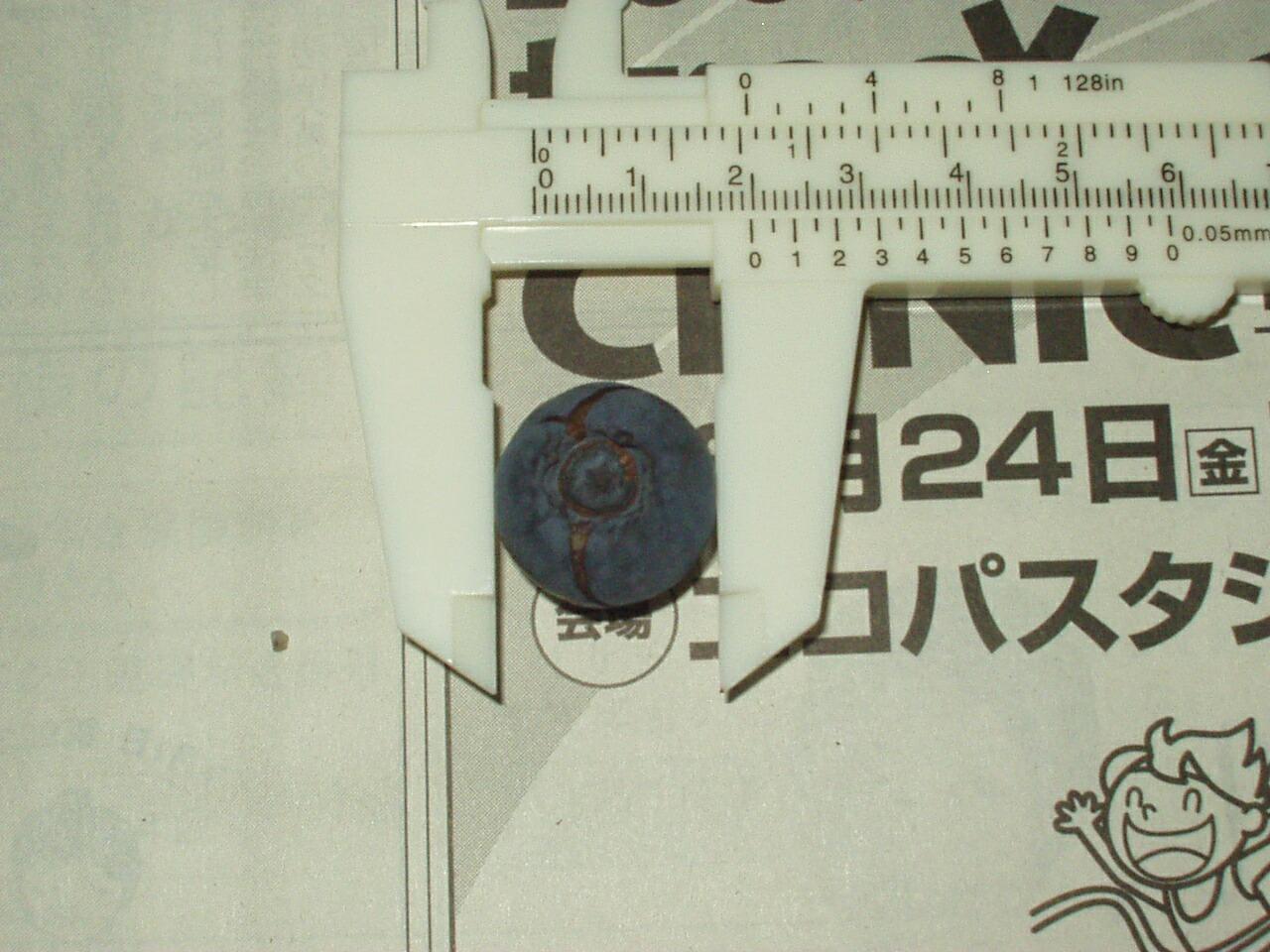 f0018078_19545052.jpg