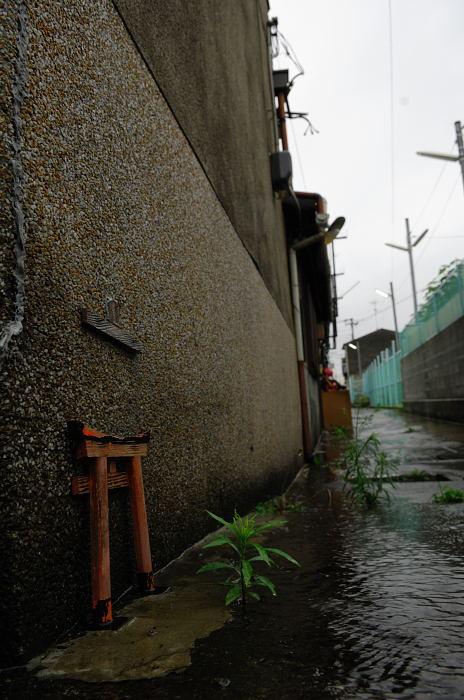 雨の日街角・其の三_f0032011_20482316.jpg