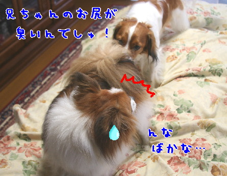 d0013149_2152010.jpg