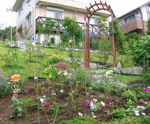2007年6月27日(水)庭の手入れと薔薇_f0060461_1514815.jpg