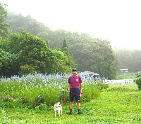 2007年6月27日(水)庭の手入れと薔薇_f0060461_15245168.jpg
