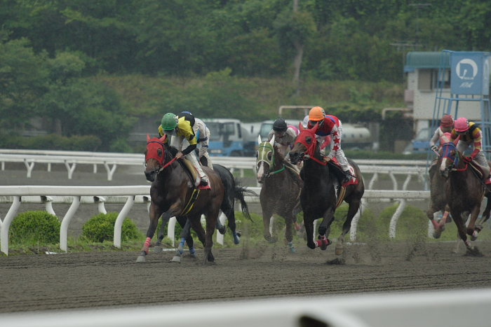 2007年6月24日(日) 高知競馬 8R シルバーありがと特別_a0077663_18494680.jpg