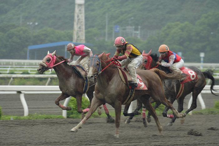 2007年6月24日(日) 高知競馬 8R シルバーありがと特別_a0077663_18503381.jpg