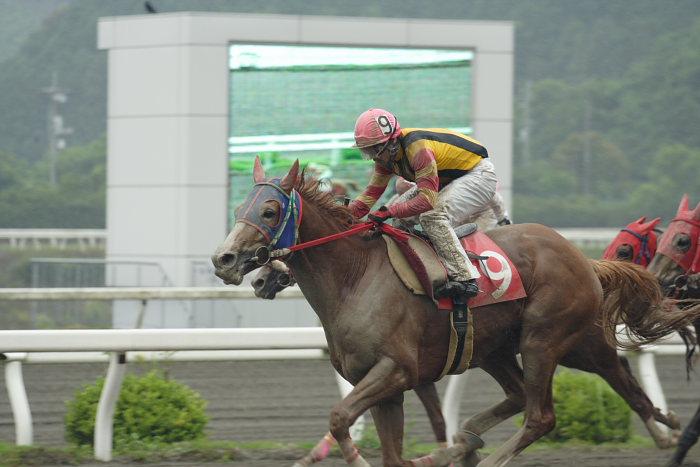 2007年6月24日(日) 高知競馬 8R シルバーありがと特別_a0077663_18504249.jpg