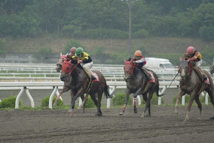 2007年6月24日(日) 高知競馬 8R シルバーありがと特別_a0077663_1852626.jpg