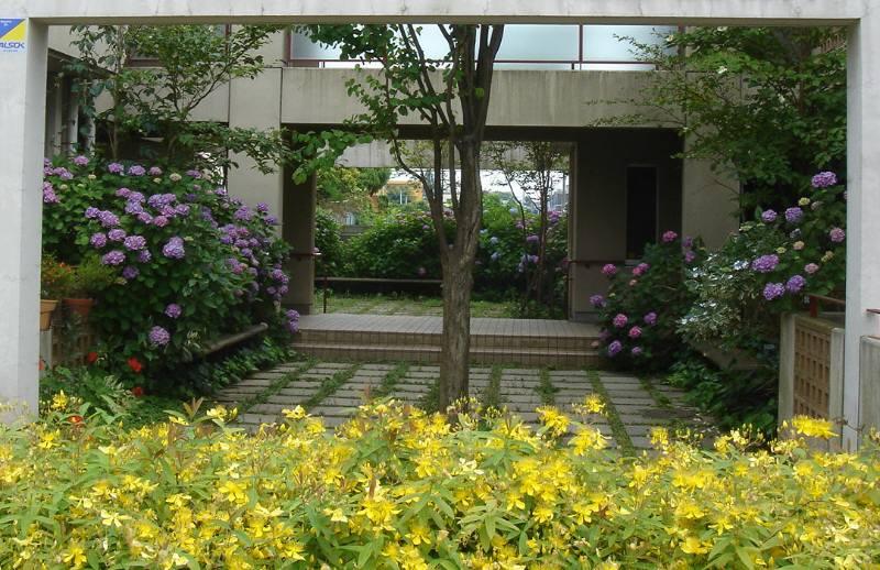 6月に美しいマンション_f0059673_2314067.jpg
