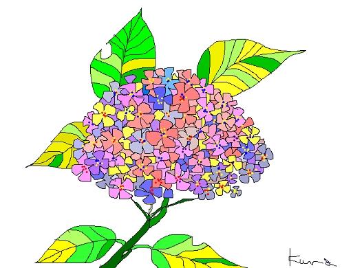 パソコンで描いた紫陽花が、残っていたよ_b0104092_1125788.jpg