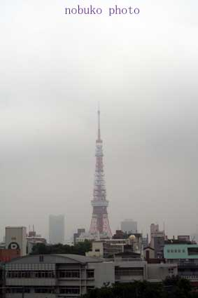 TOKYO!_c0100195_10423760.jpg