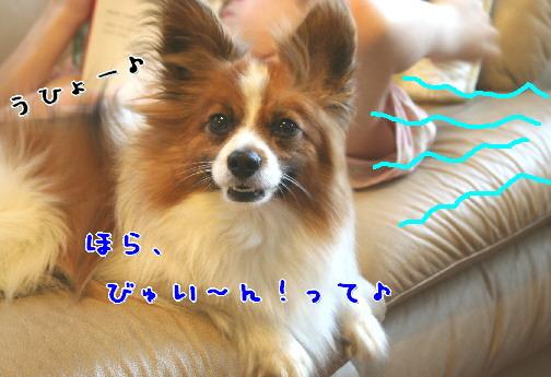 d0013149_042561.jpg