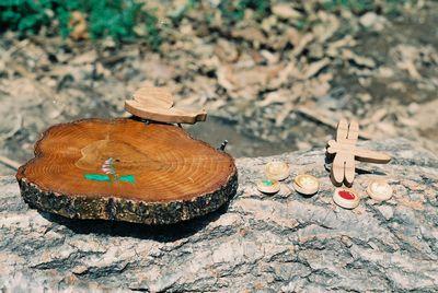 フィトンチッドの木工品_b0100253_4404341.jpg