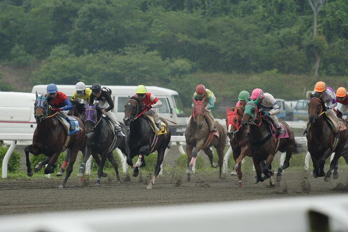 2007年6月24日(日) 高知競馬 7R_a0077663_20332681.jpg