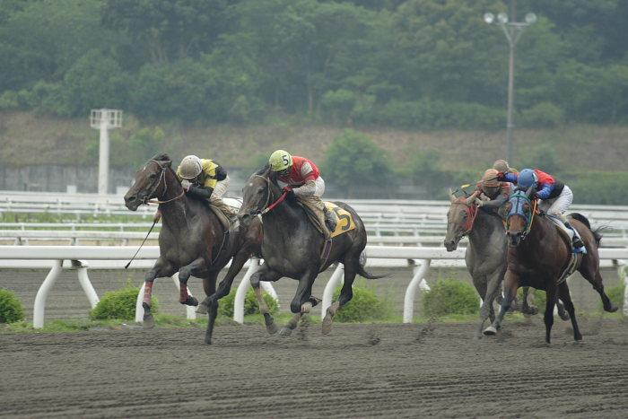 2007年6月24日(日) 高知競馬 7R_a0077663_20334092.jpg