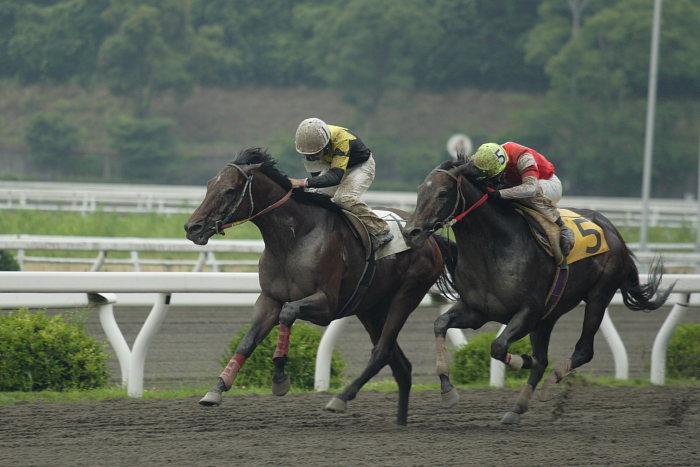 2007年6月24日(日) 高知競馬 7R_a0077663_20335670.jpg
