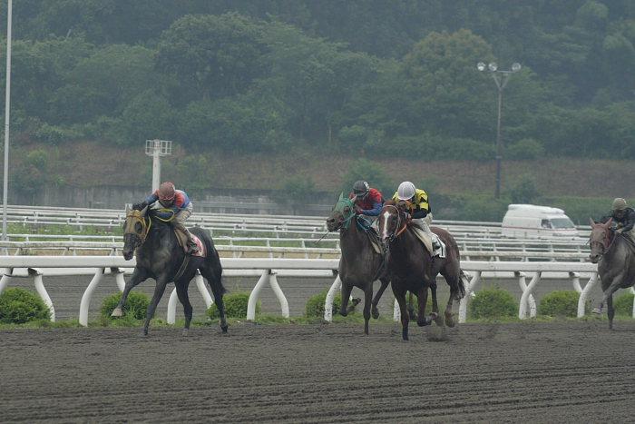 倉兼育康騎手、アンニョンヒ ケセヨ~_a0077663_20543499.jpg