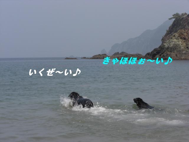 d0116574_1941544.jpg