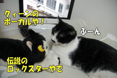 b0041182_1512471.jpg
