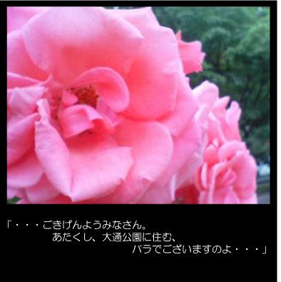 c0123612_15454893.jpg