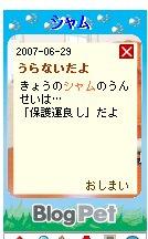 b0089730_010464.jpg