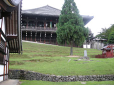 旅行気分の奈良_d0110462_14293673.jpg