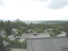 旅行気分の奈良_d0110462_143379.jpg
