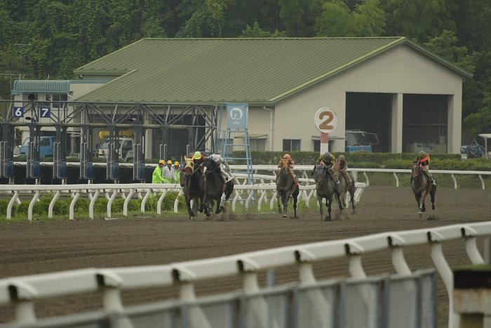 2007年6月24日(日) 高知競馬 3R _a0077663_1943396.jpg
