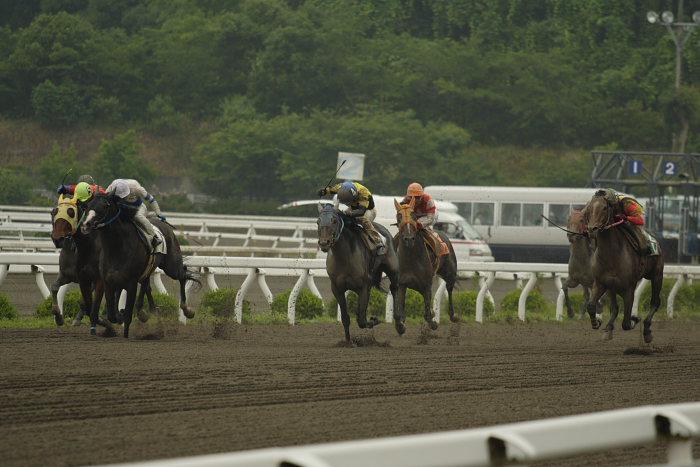 2007年6月24日(日) 高知競馬 3R _a0077663_19434720.jpg