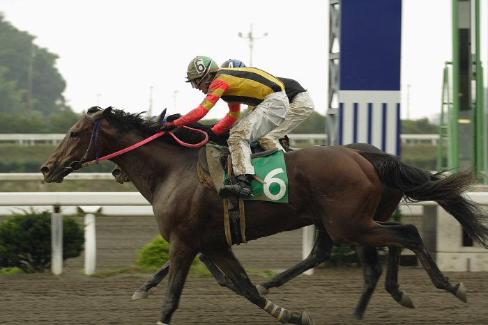 2007年6月24日(日) 高知競馬 3R _a0077663_194497.jpg