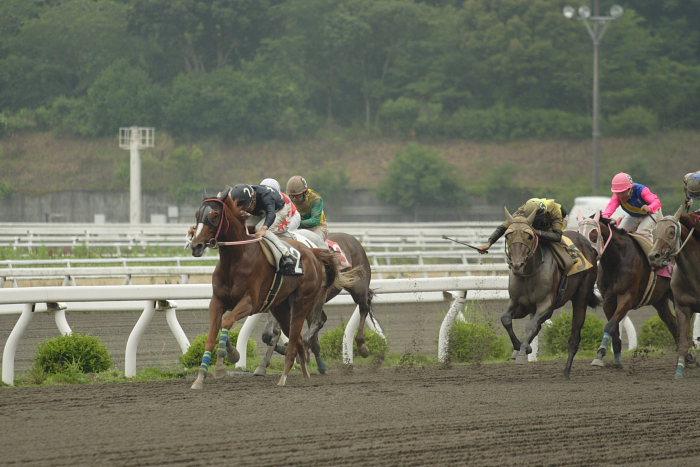 2007年6月24日(日) 高知競馬 4R_a0077663_20123524.jpg