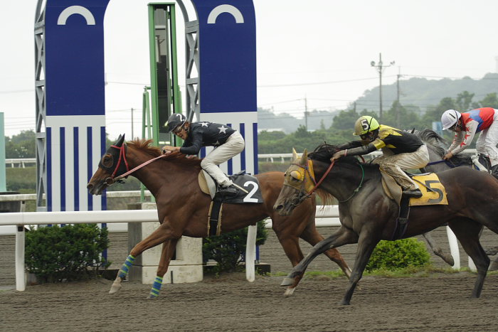 2007年6月24日(日) 高知競馬 4R_a0077663_2012547.jpg