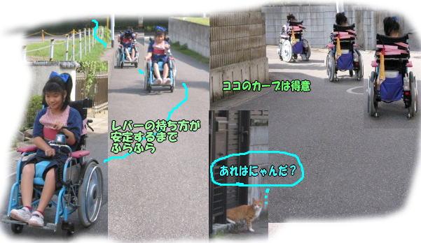 f0082367_1331441.jpg