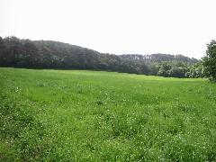 安達太良川水源地の一つを訪ねて_a0087378_18521343.jpg