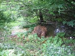 安達太良川水源地の一つを訪ねて_a0087378_18524860.jpg