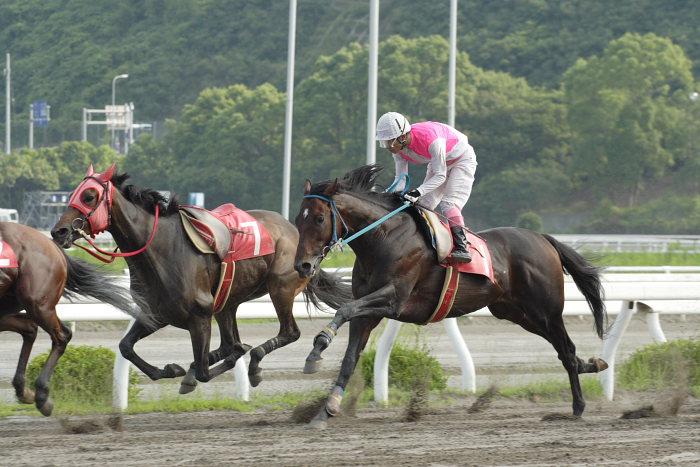 2007年6月30日(土) 高知競馬 10R 高知なすは日本一特別 レース_a0077663_19381745.jpg