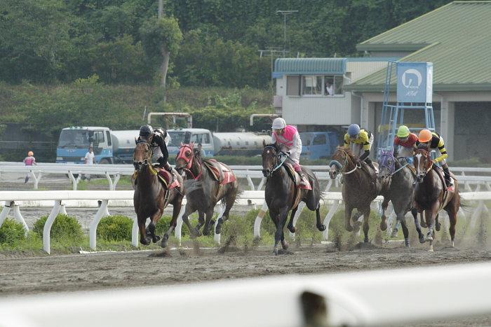 2007年6月30日(土) 高知競馬 10R 高知なすは日本一特別 レース_a0077663_1938312.jpg
