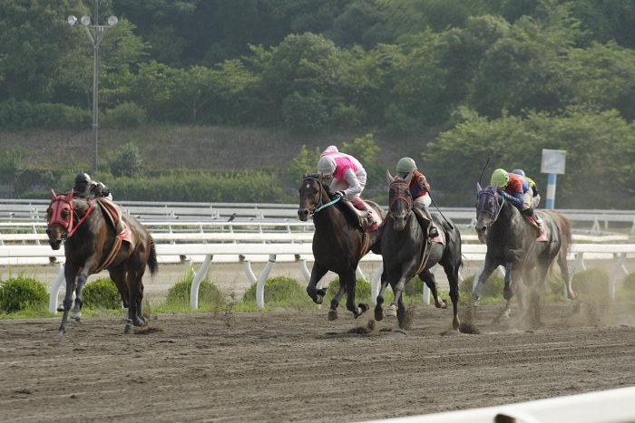 2007年6月30日(土) 高知競馬 10R 高知なすは日本一特別 レース_a0077663_19384379.jpg