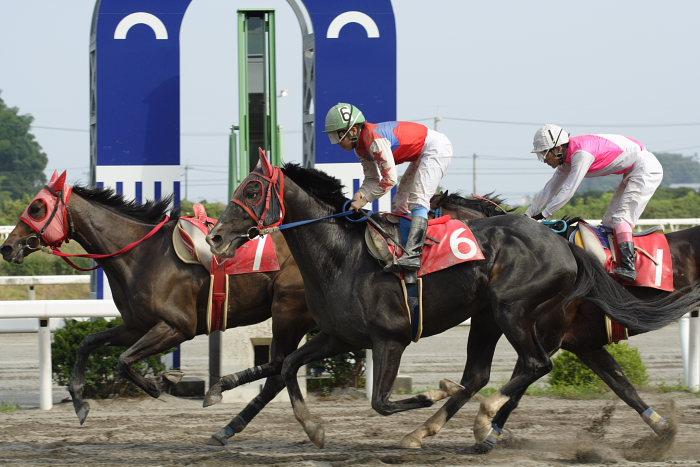 2007年6月30日(土) 高知競馬 10R 高知なすは日本一特別 レース_a0077663_1939319.jpg