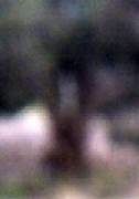 a0058784_2050153.jpg
