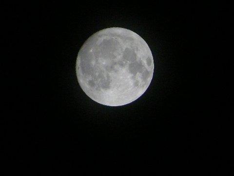 月に願いを_f0147895_131168.jpg
