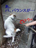 c0064796_0225659.jpg