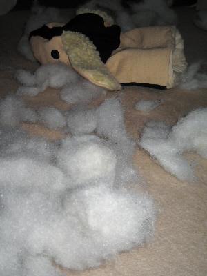 犬のミトンの中身が全部引っ張り出され、絨毯は一面綿の海。悲しげに横たわる萎んだミトンの目から、涙がこぼれている様に見えます。
