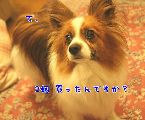 d0013149_1462981.jpg