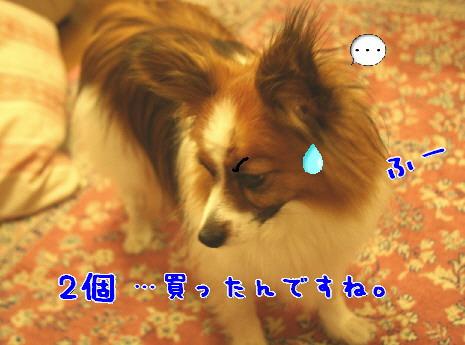 d0013149_1525213.jpg