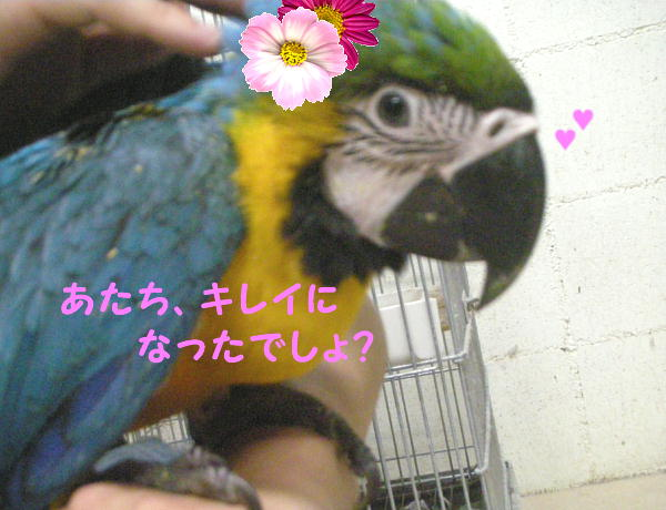 f0132055_214843.jpg