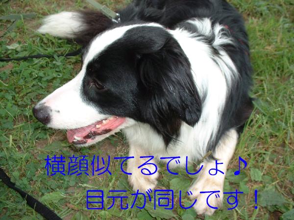 c0120585_1942652.jpg