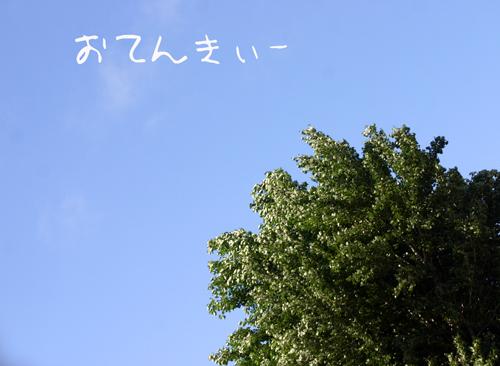 f0001895_2004894.jpg